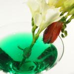 bar_drink_piazza_spagna (4)
